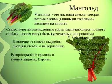 Мангольд Мангольд - это листовая свекла, которая похожа своими длинными сте...