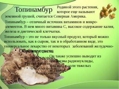 Топинамбур Родиной этого растения, которое еще называют земляной грушей, счит...