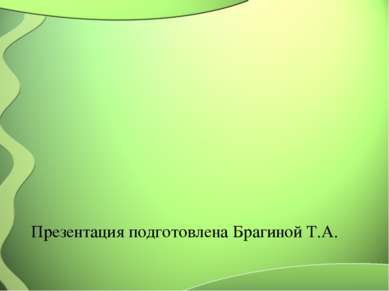 Презентация подготовлена Брагиной Т.А.