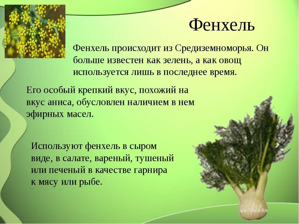 Фенхель Фенхель происходит из Средиземноморья. Он больше известен как зелень,...