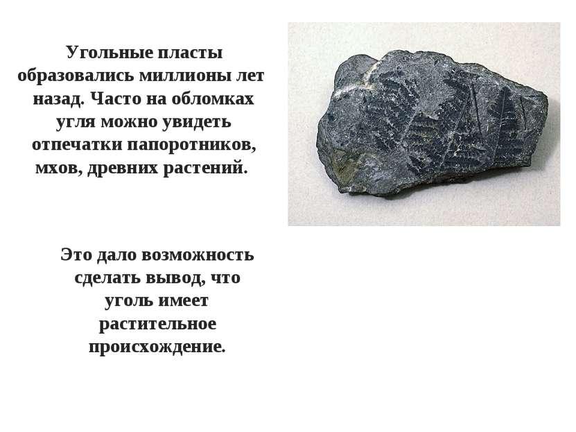 Угольные пласты образовались миллионы лет назад. Часто на обломках угля можно...