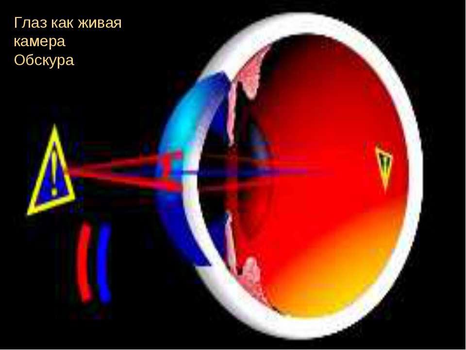 Глаз как живая камера Обскура