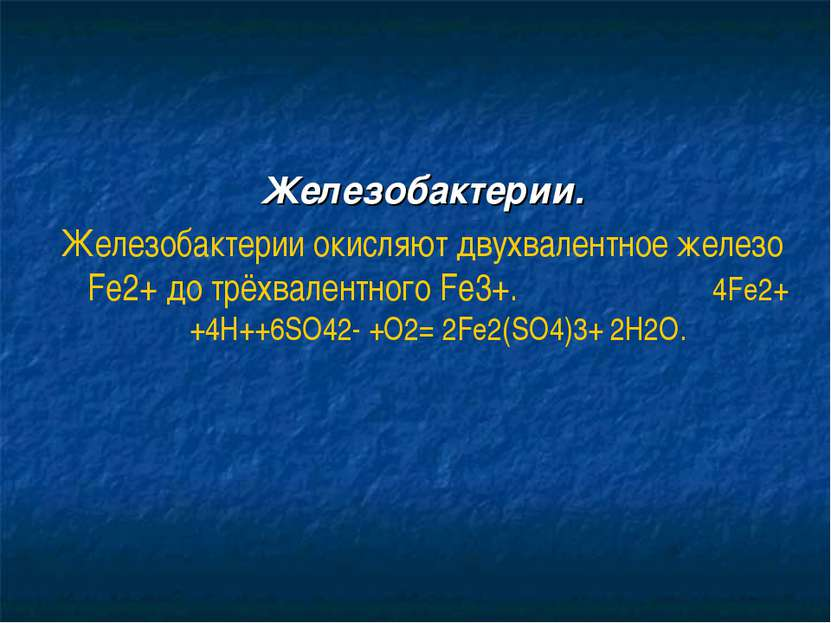 Железобактерии. Железобактерии окисляют двухвалентное железо Fe2+ до трёхвале...