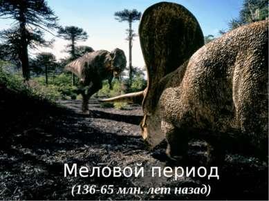 Меловой период (136-65 млн. лет назад)