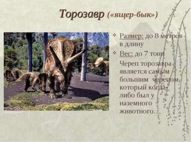 Торозавр («ящер-бык») Размер: до 8 метров в длину Вес: до 7 тонн Череп тороза...