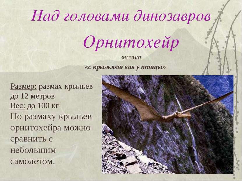 Над головами динозавров Орнитохейр значит «с крыльями как у птицы» Размер: ра...
