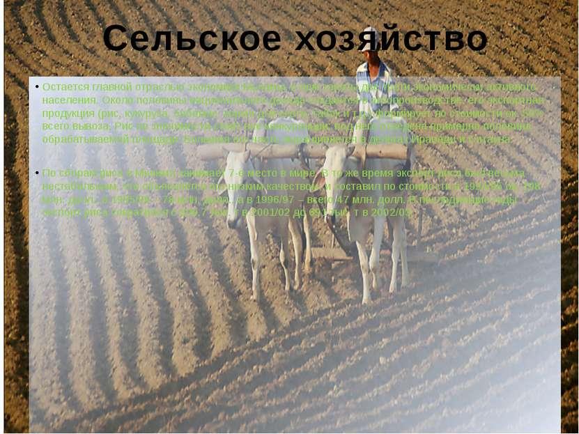 Сельское хозяйство Остается главной отраслью экономики Мьянмы, в нем заняты д...