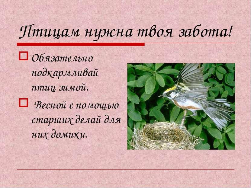 Птицам нужна твоя забота! Обязательно подкармливай птиц зимой. Весной с помощ...
