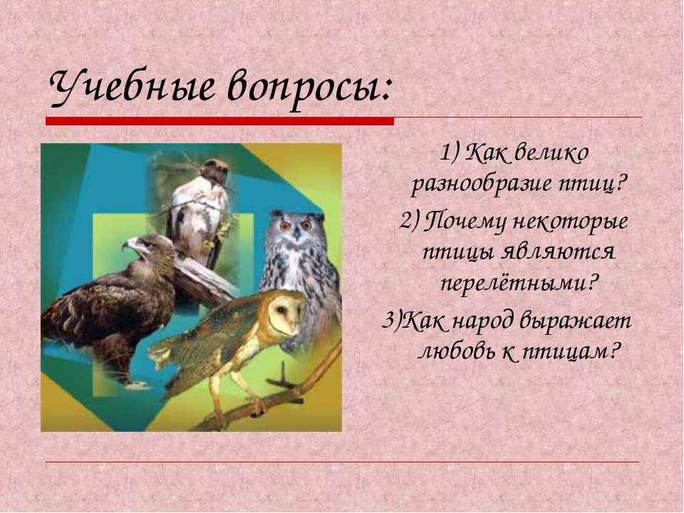 Учебные вопросы: 1) Как велико разнообразие птиц? 2) Почему некоторые птицы я...
