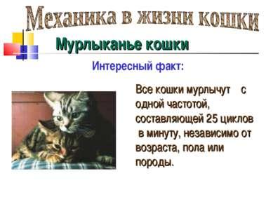 Мурлыканье кошки Интересный факт: Все кошки мурлычут с одной частотой, состав...