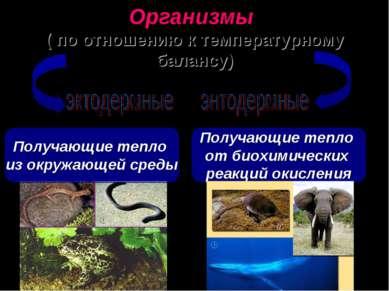 Организмы ( по отношению к температурному балансу) Получающие тепло из окружа...