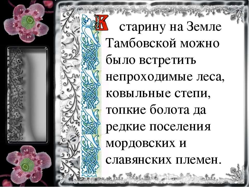 старину на Земле Тамбовской можно было встретить непроходимые леса, ковыльные...