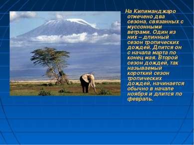 На Килиманджаро отмечено два сезона, связанных с муссонными ветрами. Один из ...