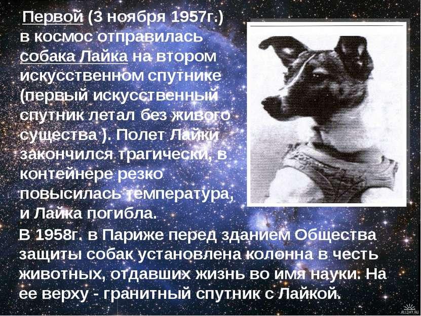 Первой (3 ноября 1957г.) в космос отправилась собака Лайка на втором искусств...