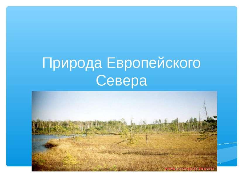 Природа Европейского Севера
