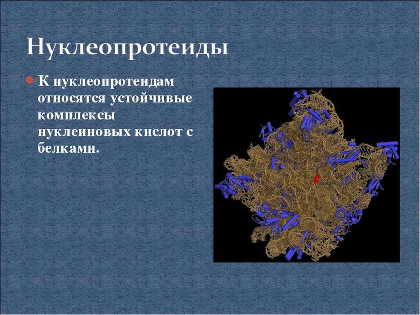 К нуклеопротеидам относятся устойчивые комплексы нуклеиновых кислот с белками.