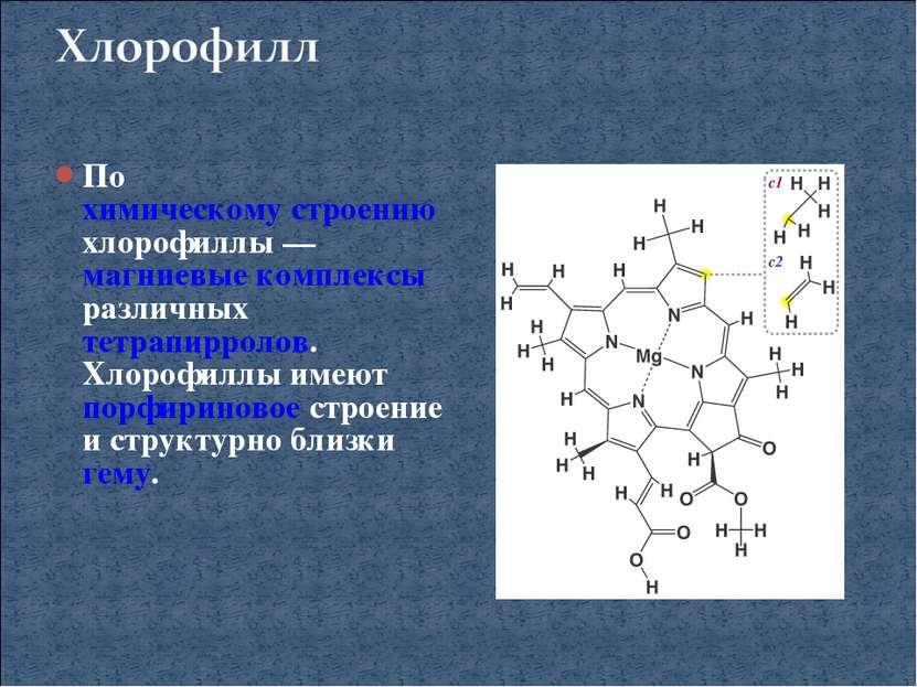 По химическому строению хлорофиллы— магниевые комплексы различных тетрапирро...