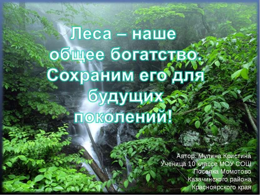 Урок географии в 10 классе. Автор: Карезина Нина Валентиновна, учитель МОУ СО...