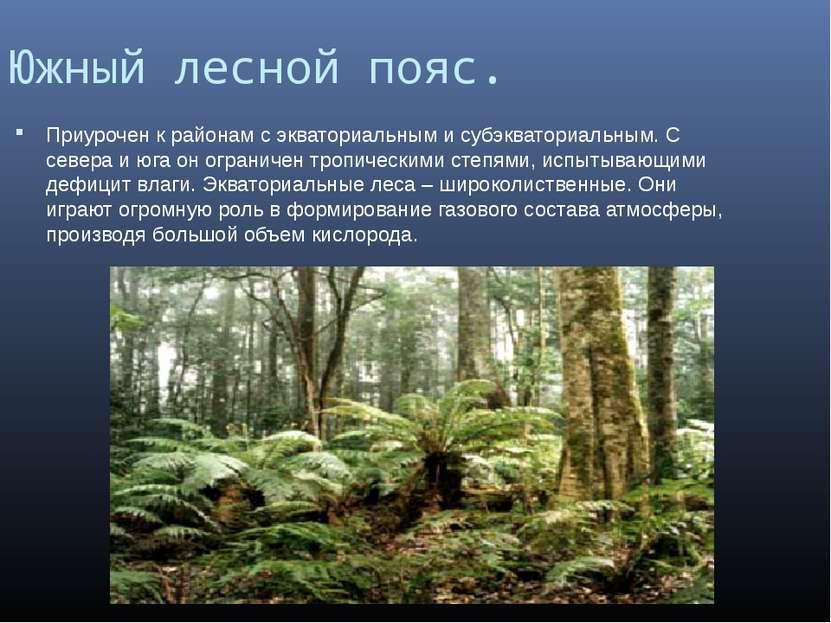 Южный лесной пояс. Приурочен к районам с экваториальным и субэкваториальным. ...