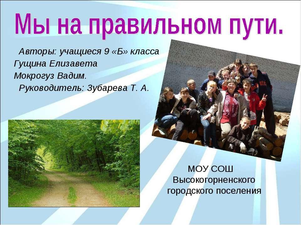 Авторы: учащиеся 9 «Б» класса Гущина Елизавета Мокрогуз Вадим. Руководитель: ...