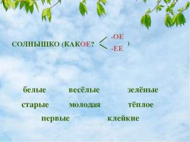 белые весёлые зелёные старые молодая тёплое первые клейкие СОЛНЫШКО (КАКОЕ? -...