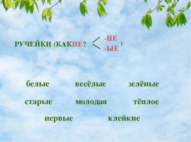 весёлые РУЧЕЙКИ (КАКИЕ? -ИЕ -ЫЕ ) белые зелёные старые молодая первые клейкие...