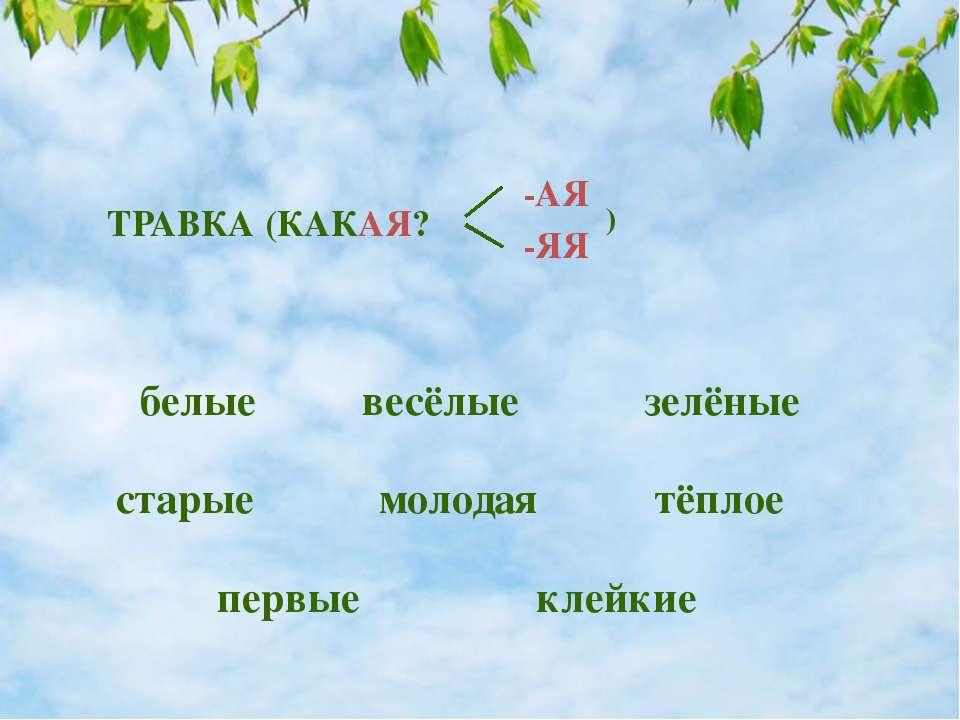 молодая ТРАВКА (КАКАЯ? -АЯ -ЯЯ ) белые зелёные весёлые старые первые клейкие ...