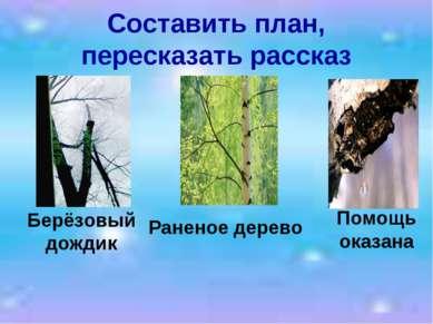 Составить план, пересказать рассказ Берёзовый дождик Раненое дерево Помощь ок...