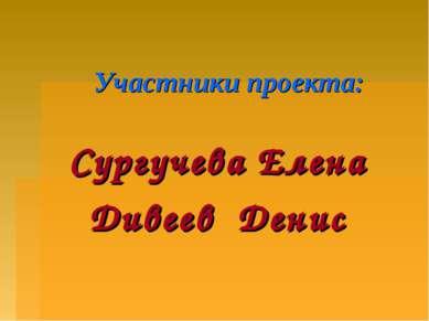 Участники проекта: Сургучева Елена Дивеев Денис