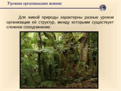 Уровни организации жизни Для живой природы характерны разные уровни организац...