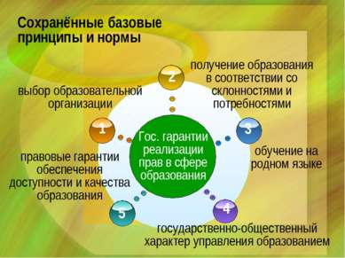 Сохранённые базовые принципы и нормы Гос. гарантии реализации прав в сфере об...