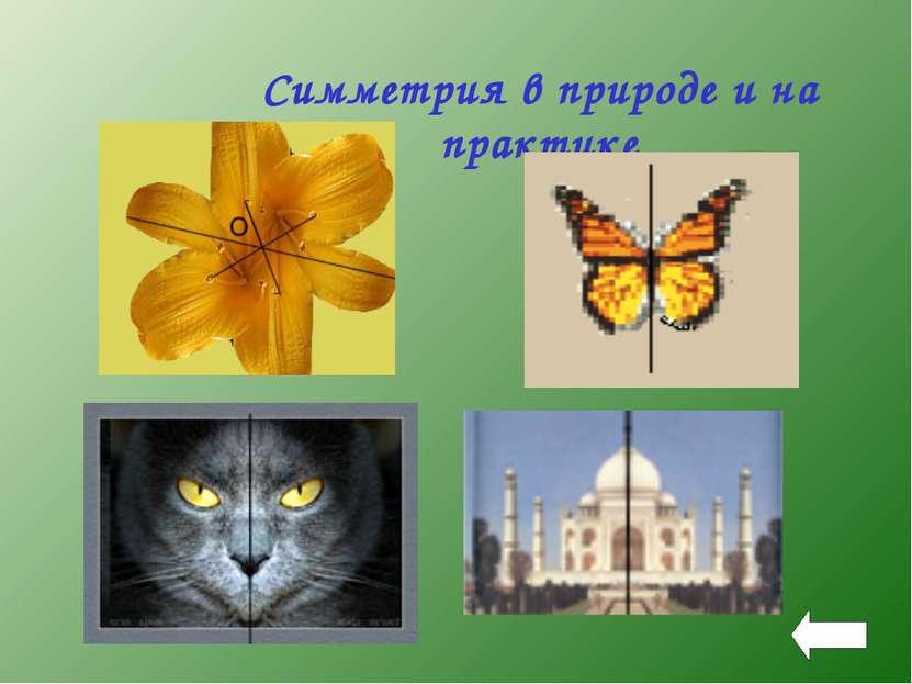 Симметрия в природе и на практике