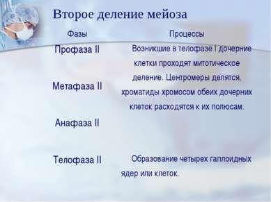 Второе деление мейоза Фазы Процессы Профаза II Возникшие в телофазе I дочерни...