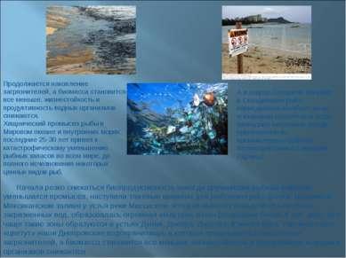 Начала резко снижаться биопродуктивность некогда крупнейших рыбных районов, у...