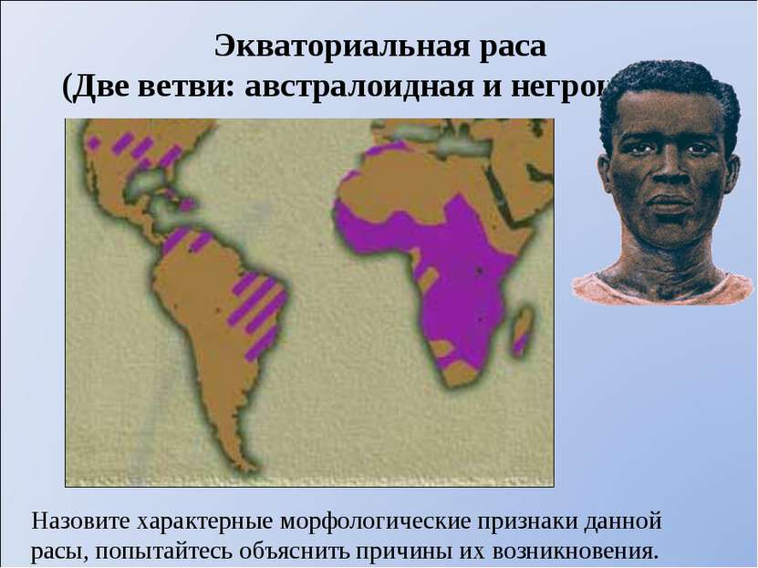 Экваториальная раса (Две ветви: австралоидная и негроидная) Назовите характер...