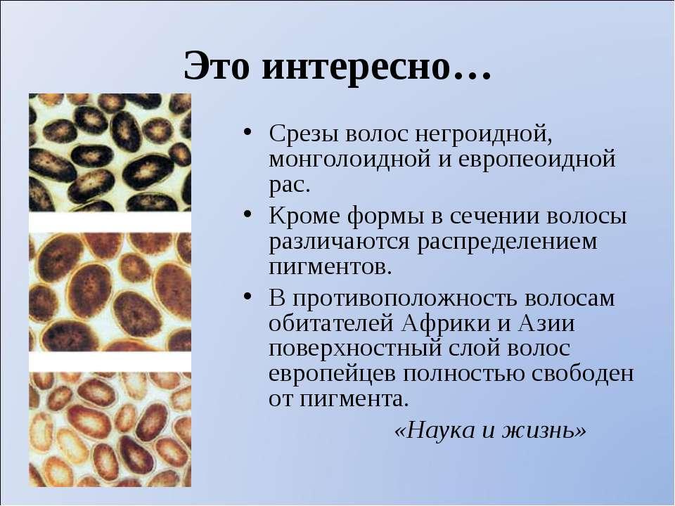 Это интересно… Срезы волос негроидной, монголоидной и европеоидной рас. Кроме...