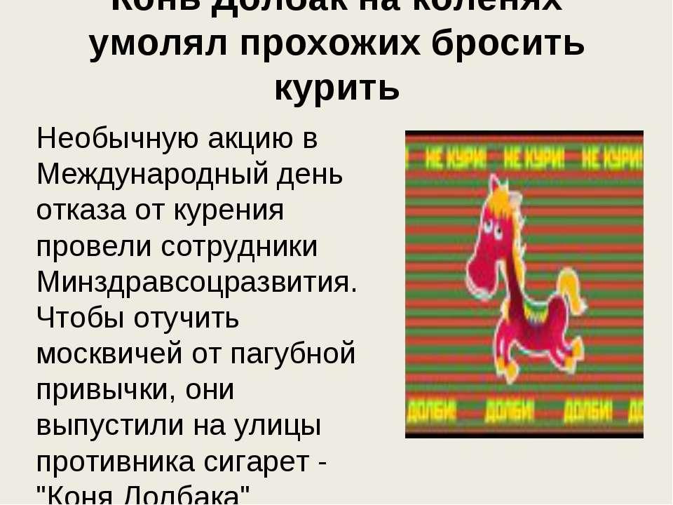 Конь Долбак на коленях умолял прохожих бросить курить Необычную акцию в Между...
