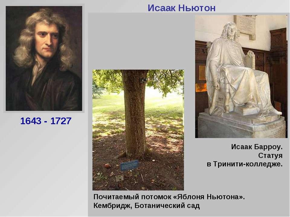 Исаак Ньютон Английский физик и математик. Создал современную механику (закон...