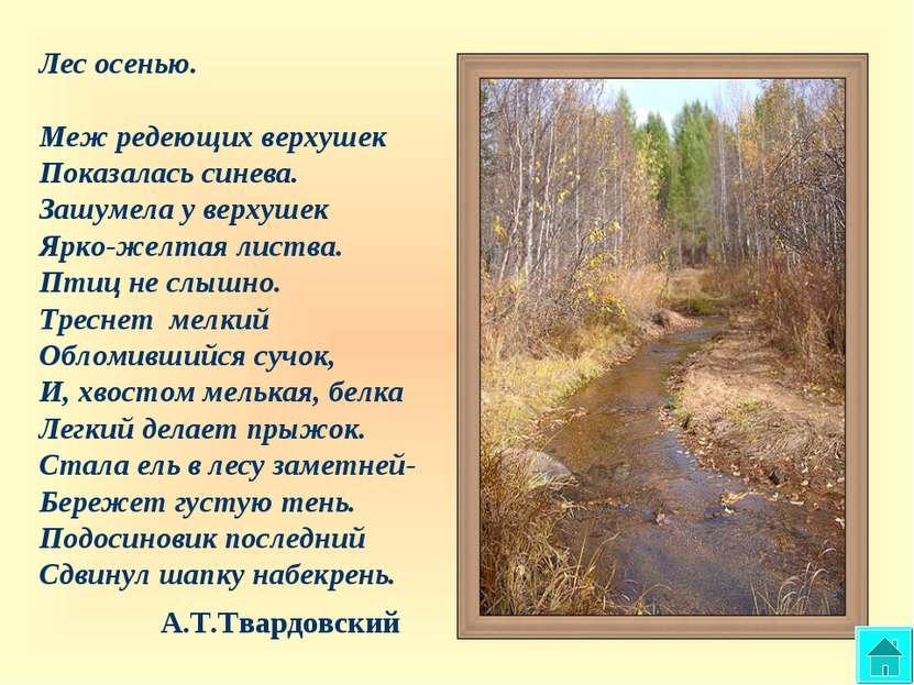 Лес осенью. Меж редеющих верхушек Показалась синева. Зашумела у верхушек Ярко...