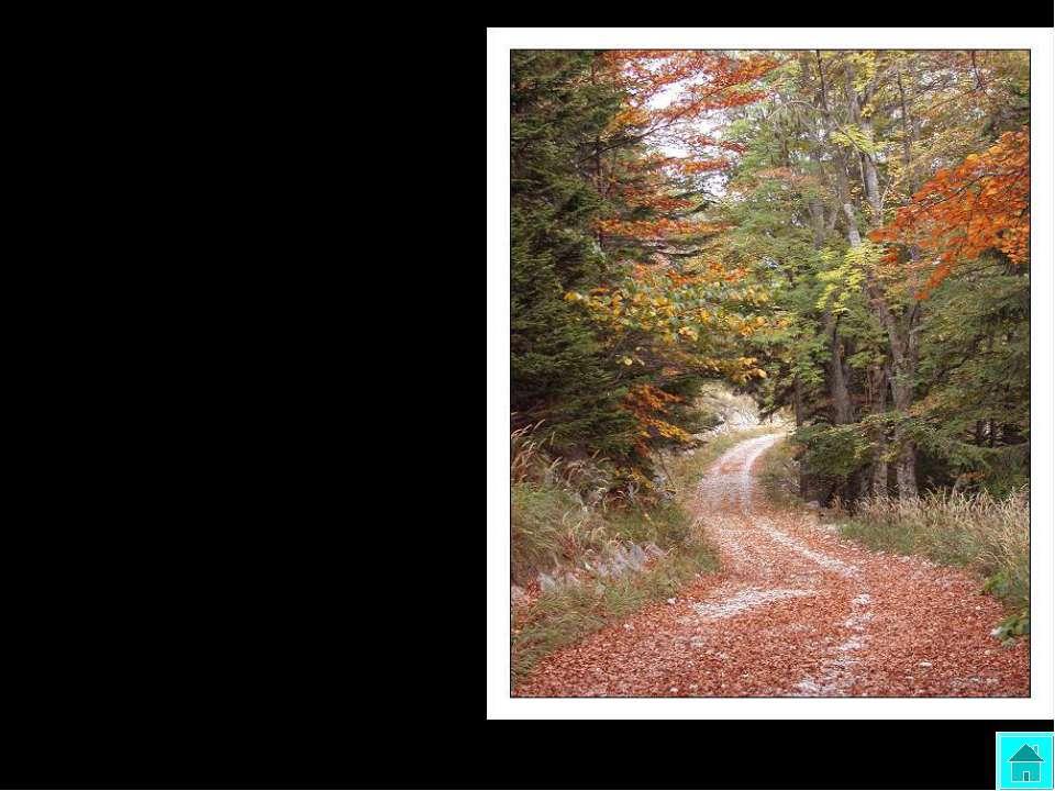 ОСЕНЬ Кроет уж лист золотой Влажную землю в лесу. Смело топчу я ногой Вешнюю ...