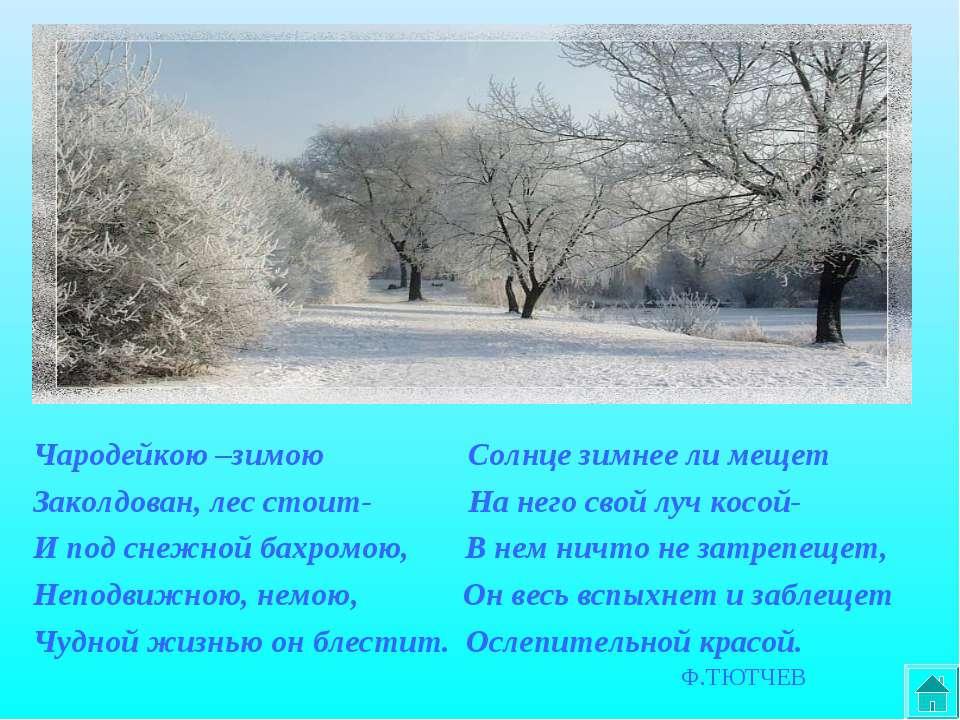 Чародейкою –зимою Солнце зимнее ли мещет Заколдован, лес стоит- На него свой ...