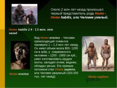 Около 2 млн лет назад произошел первый представитель рода Homo - Homo habilis...