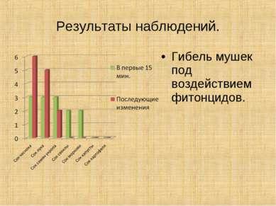 Результаты наблюдений. Гибель мушек под воздействием фитонцидов.
