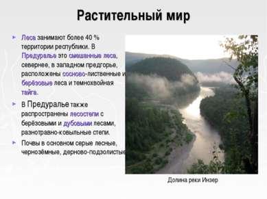 Растительный мир Леса занимают более 40% территории республики. В Предуралье...