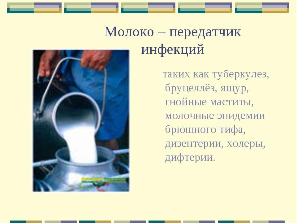 Молоко – передатчик инфекций таких как туберкулез, бруцеллёз, ящур, гнойные м...
