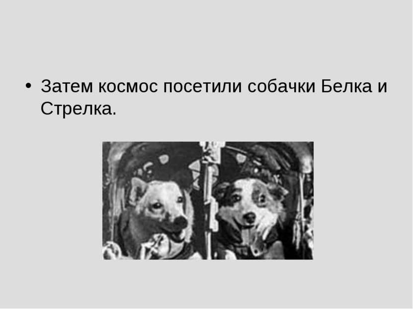 Затем космос посетили собачки Белка и Стрелка.