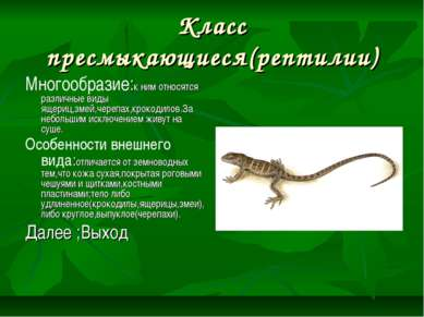 Класс пресмыкающиеся(рептилии) Многообразие:к ним относятся различные виды ящ...