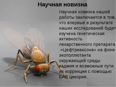 Домащенко А.Н. Научная новизна Научная новизна нашей работы заключается в том...