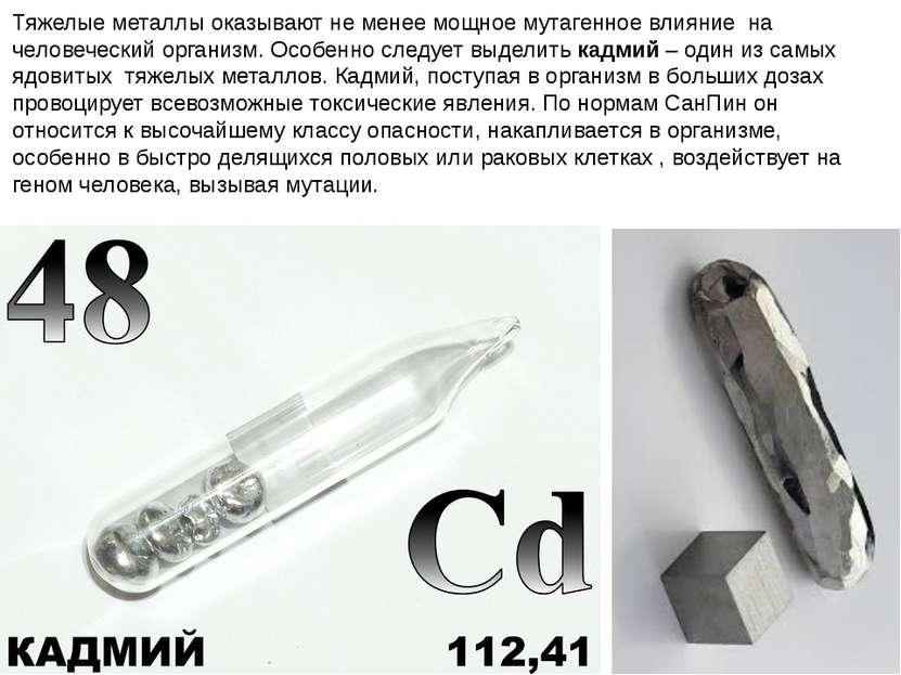 Тяжелые металлы оказывают не менее мощное мутагенное влияние на человеческий ...