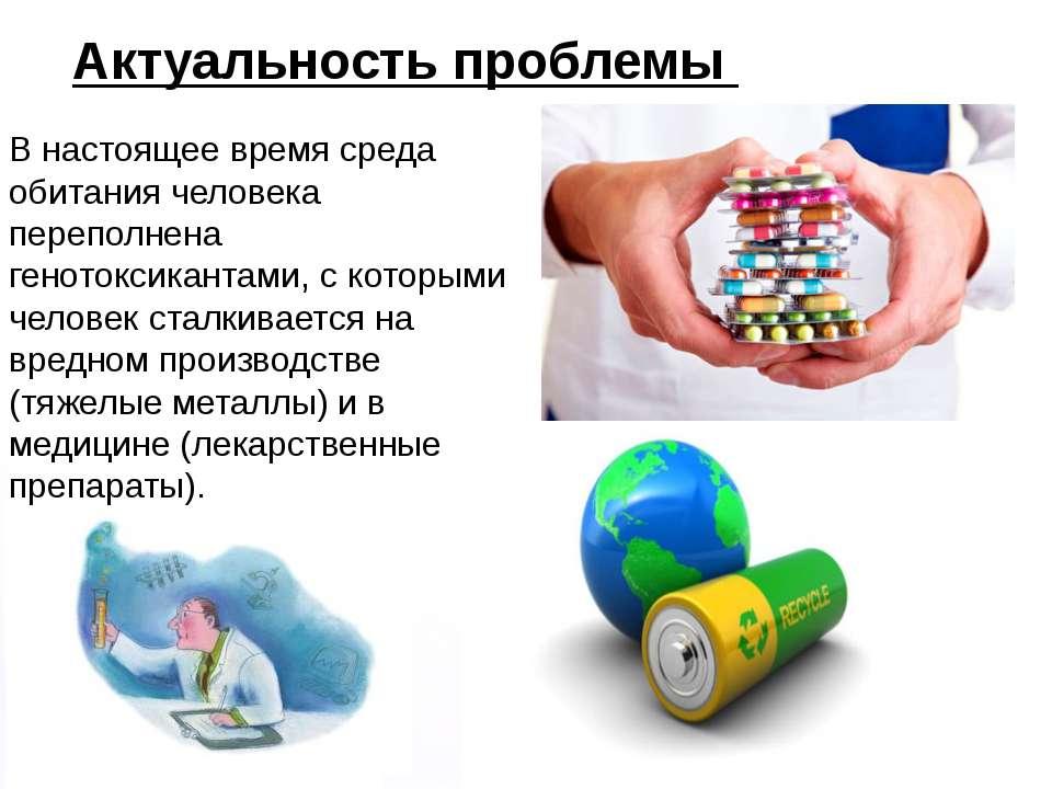 Домащенко А.Н. Актуальность проблемы В настоящее время среда обитания человек...